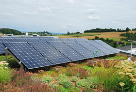 Solar panels on green roof can bring 4% increase in yield