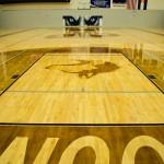 Shiny hardwood gym floor