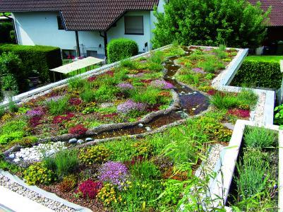 ZinCo biodiversity green roof