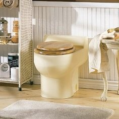 Figure 3- An example of what an Envirolet waterless composting toilet could look like in your bathroom. Who knew composting feces could be so glamorous?
