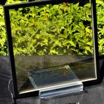 A square foot piece of clear solar glass on a stand