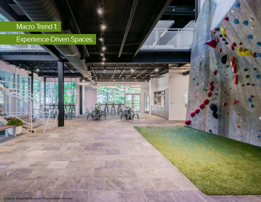Open workspace with climbing wall