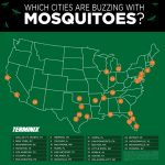 Map of mosquito cities