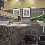 Green handheld disinfecting sprayer spraying restroom sinks