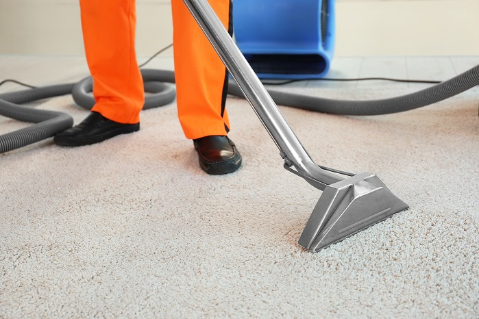 Worker cleaning carpet