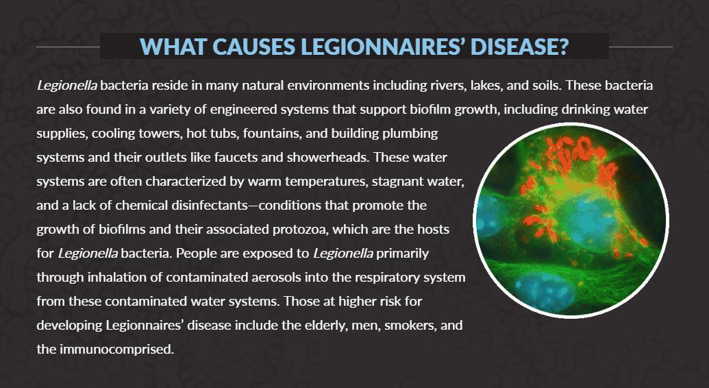 Legionnaire's disease graphic from NASEM